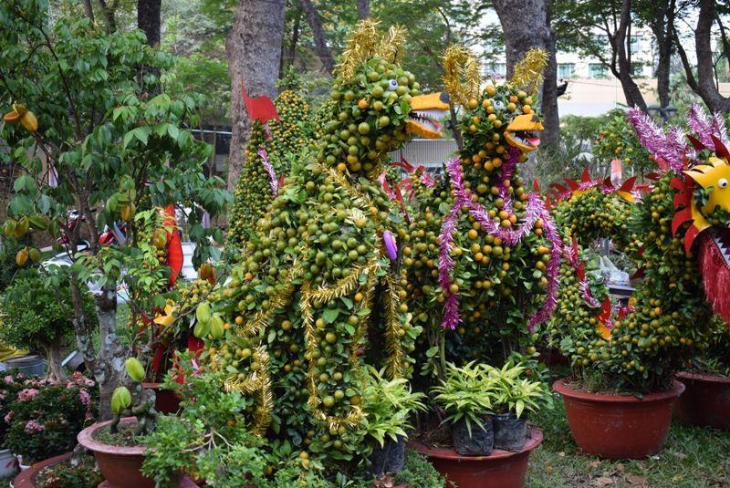 Cây kiểng, bonsai độc lạ làm khách hàng trầm trồ - ảnh 10