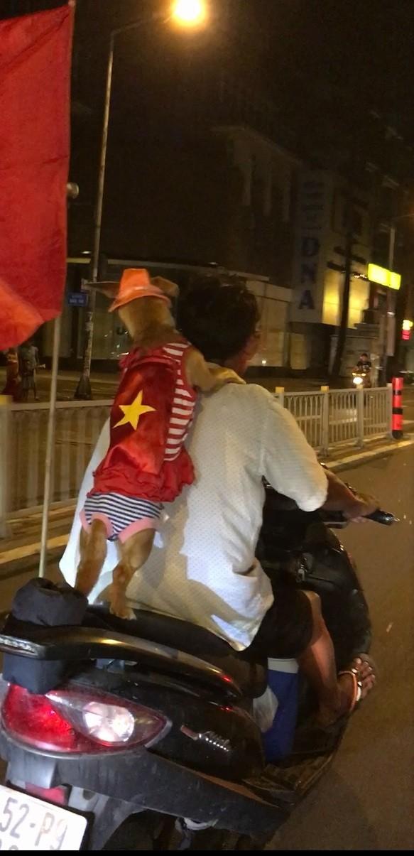 Cười té ghế xem hình ảnh hài hước đêm bão 'Việt Nam vô địch' - ảnh 5