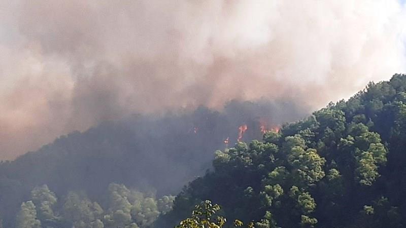 Từ vụ cháy rừng Hồng Lĩnh: Đừng đốt nhà bằng thói quen này - ảnh 3