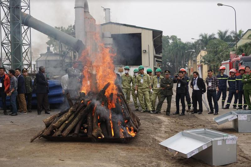 Cần biến tiêu hủy ngà voi trở thành thông lệ tại Việt Nam! - ảnh 2