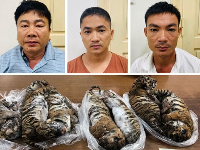 'Ông trùm' buôn bán hổ xuyên quốc gia lãnh án 6 năm tù - ảnh 1