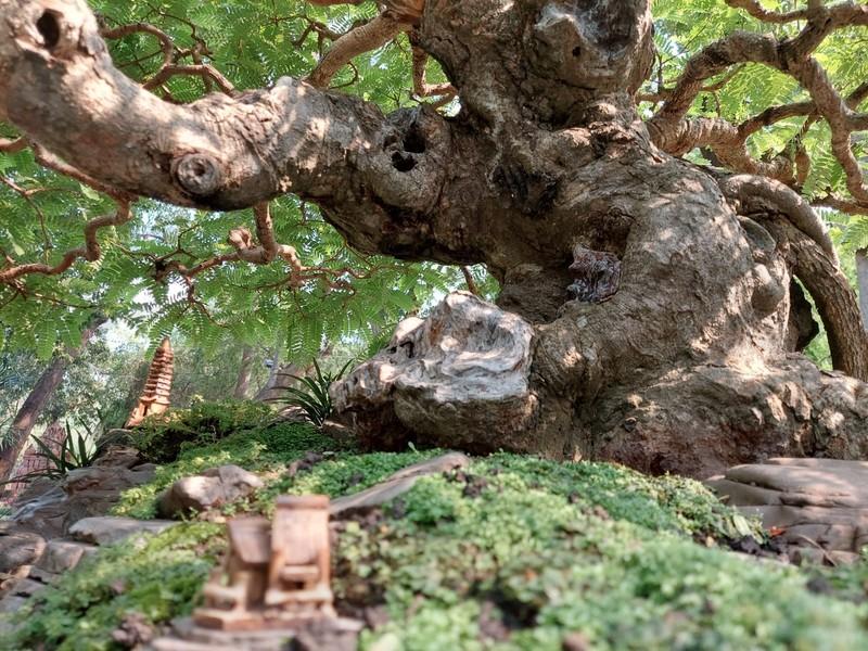 Bịt khẩu trang du xuân ngắm kì hoa dị thảo ở công viên Tao Đàn - ảnh 14