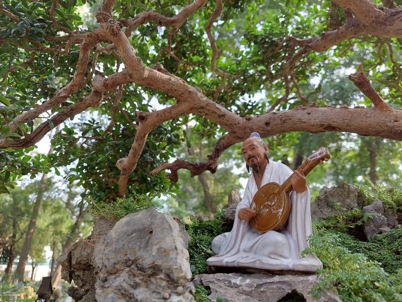 Bịt khẩu trang du xuân ngắm kì hoa dị thảo ở công viên Tao Đàn - ảnh 15