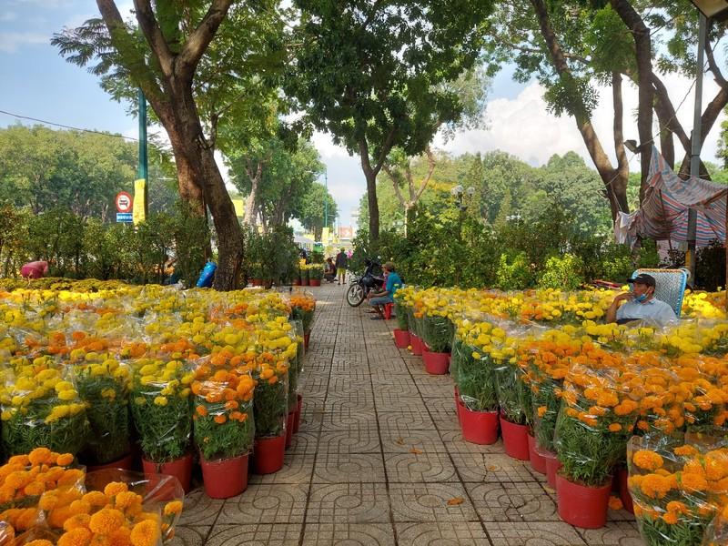 TPHCM vận động người dân mua hoa ủng hộ tiểu thương đón tết - ảnh 1