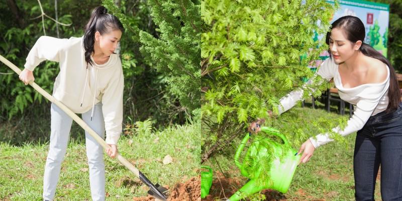 Dàn mỹ nhân Miss Earth Việt Nam trang phục giản đi trồng cây - ảnh 1