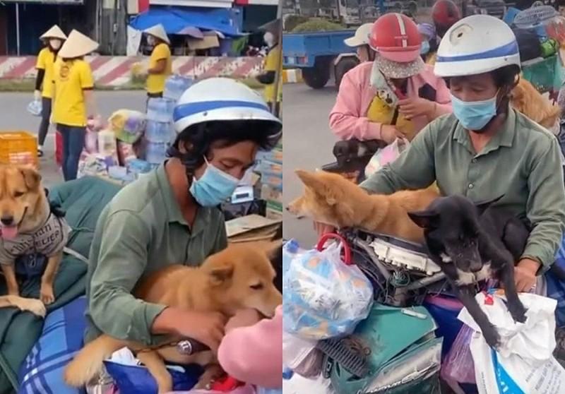 Nghệ sĩ TP.HCM chia sẻ khoảnh khắc bình dị bên những chú chó cưng - ảnh 2