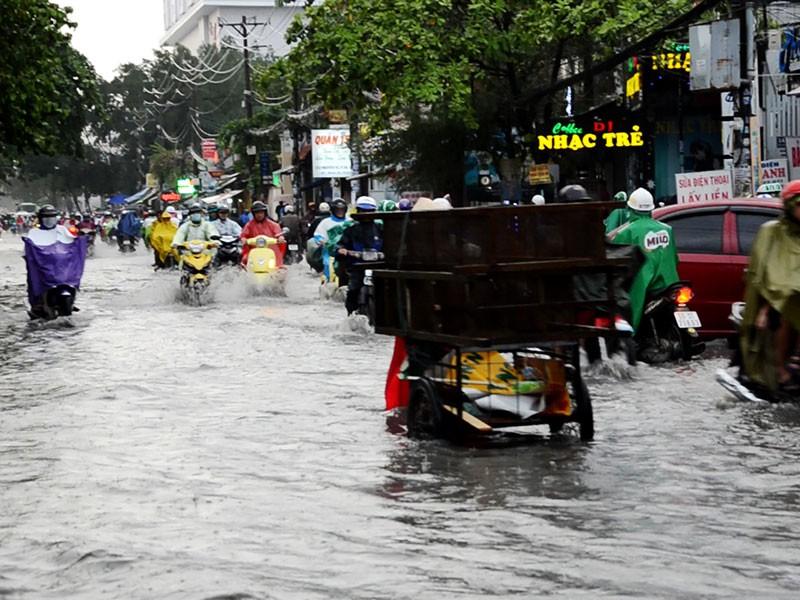TP.HCM: Mưa như trút nước, người dân bì bõm về nhà - ảnh 13
