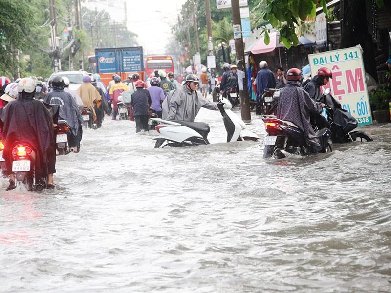 TP.HCM: Mưa như trút nước, người dân bì bõm về nhà - ảnh 5