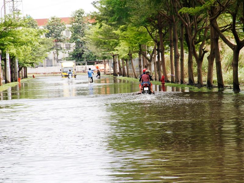 Nước ngập nhiều ngày ở KCN, nhiều công ty đóng cửa - ảnh 11
