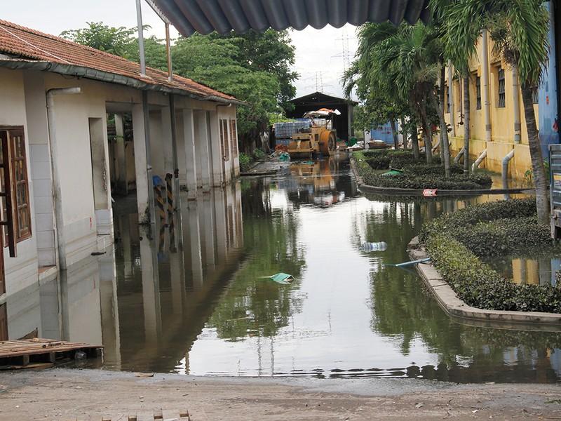 Nước ngập nhiều ngày ở KCN, nhiều công ty đóng cửa - ảnh 13