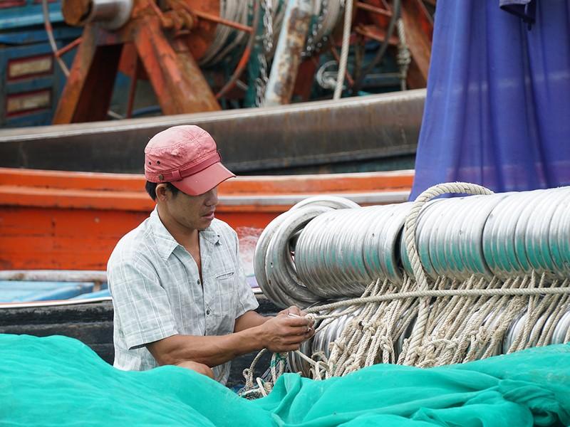 Dân Ninh Thuận chằng chống tài sản chống bão số 12 - ảnh 10
