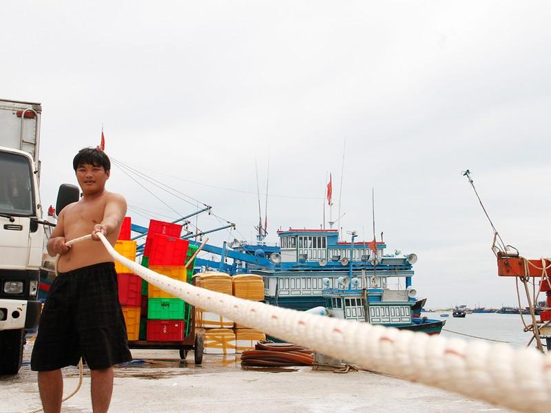 Dân Ninh Thuận chằng chống tài sản chống bão số 12 - ảnh 9