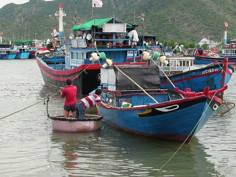 Dân Ninh Thuận chằng chống tài sản chống bão số 12 - ảnh 1