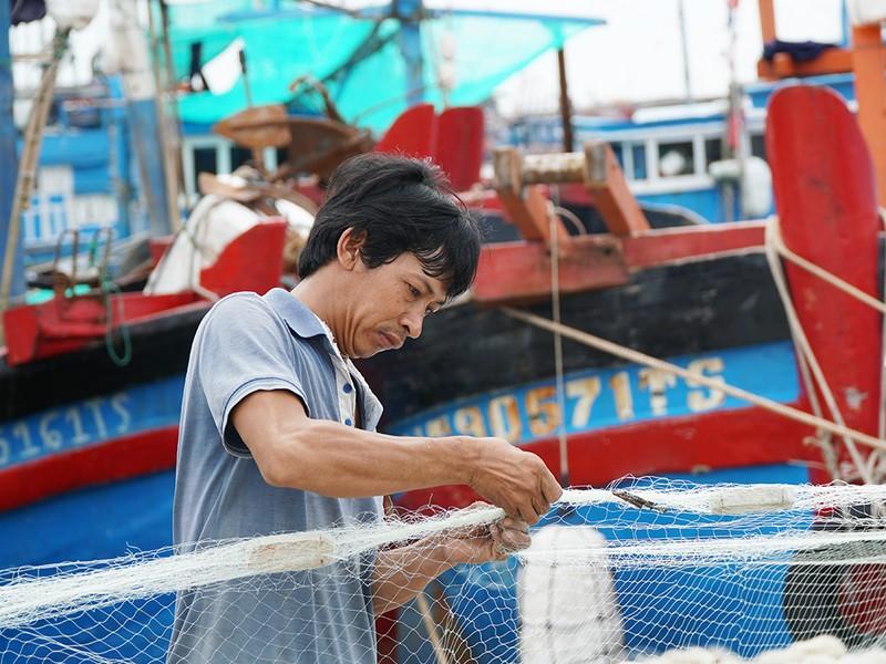 Dân Ninh Thuận chằng chống tài sản chống bão số 12 - ảnh 6
