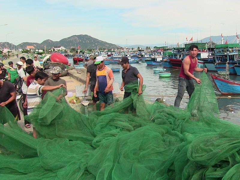 Dân Ninh Thuận chằng chống tài sản chống bão số 12 - ảnh 5