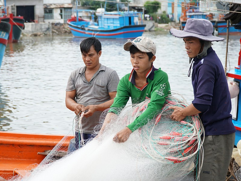 Dân Ninh Thuận chằng chống tài sản chống bão số 12 - ảnh 4
