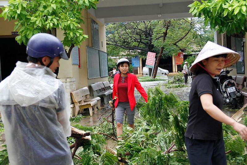 Người dân TP Nha Trang dồn sức khắc phục bão 12 - ảnh 15