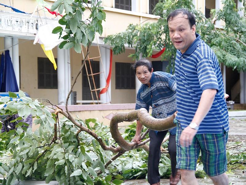 Người dân TP Nha Trang dồn sức khắc phục bão 12 - ảnh 16