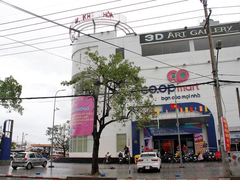 Người dân TP Nha Trang dồn sức khắc phục bão 12 - ảnh 5