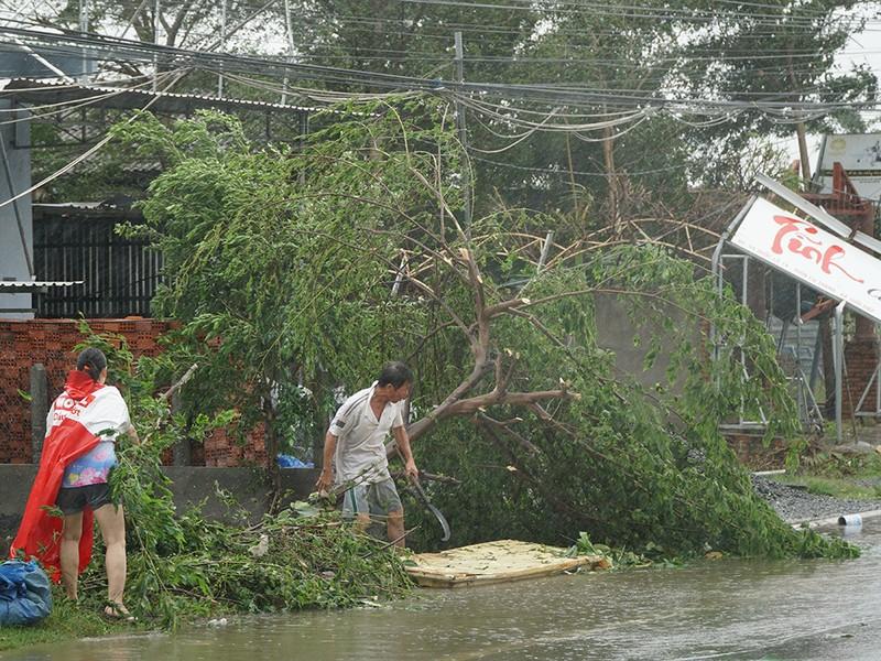 Người dân TP Nha Trang dồn sức khắc phục bão 12 - ảnh 4