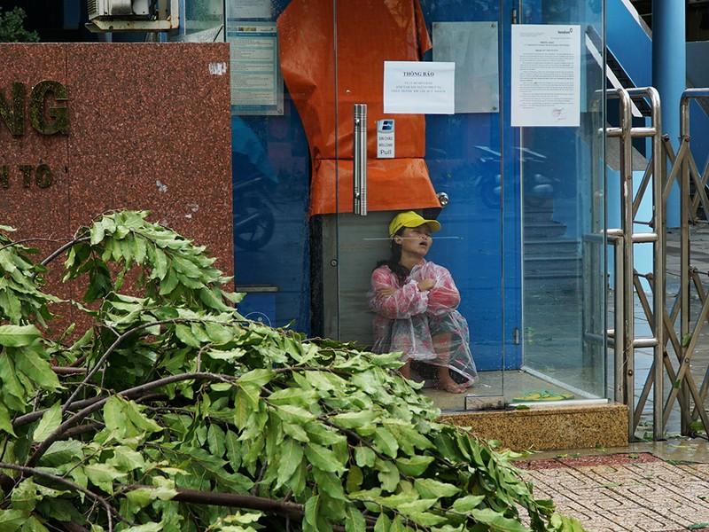 Người dân TP Nha Trang dồn sức khắc phục bão 12 - ảnh 7