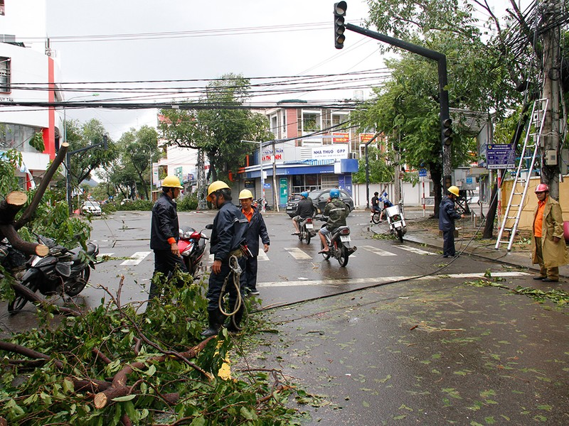 Người dân TP Nha Trang dồn sức khắc phục bão 12 - ảnh 8