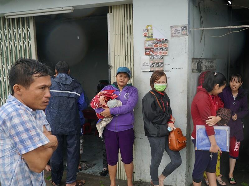 Người dân TP Nha Trang dồn sức khắc phục bão 12 - ảnh 11