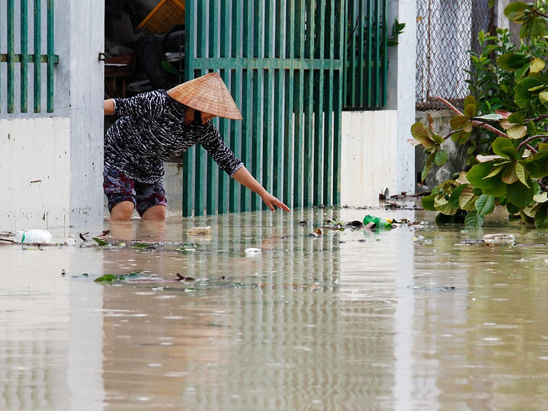 Người dân TP Nha Trang dồn sức khắc phục bão 12 - ảnh 12