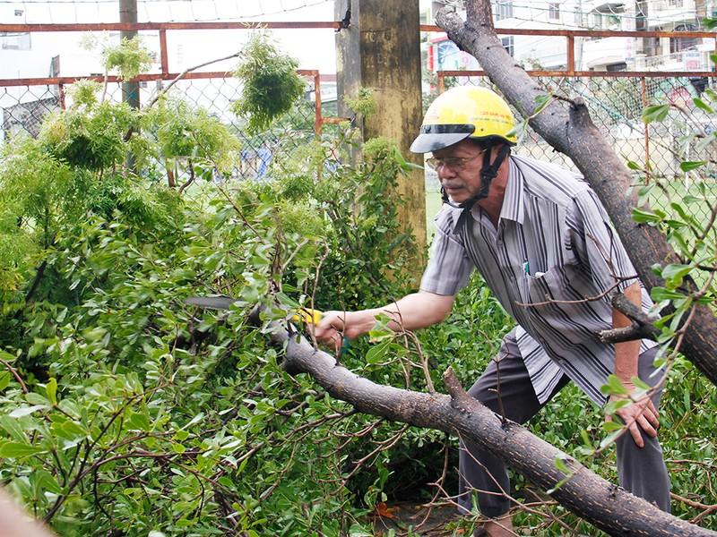 Người dân TP Nha Trang dồn sức khắc phục bão 12 - ảnh 13