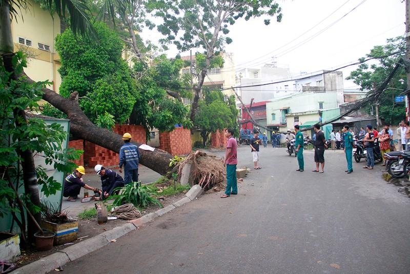 Sập mái nhà, đổ cây, cột điện... sau trận lốc ở Gò Vấp - ảnh 7