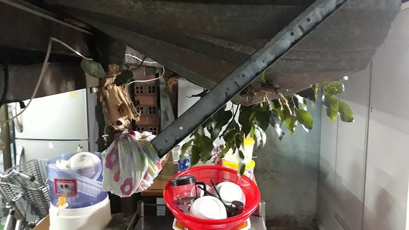 Quận 1: Cây cổ thụ tét nhánh, xuyên thủng nhà dân trong đêm - ảnh 2