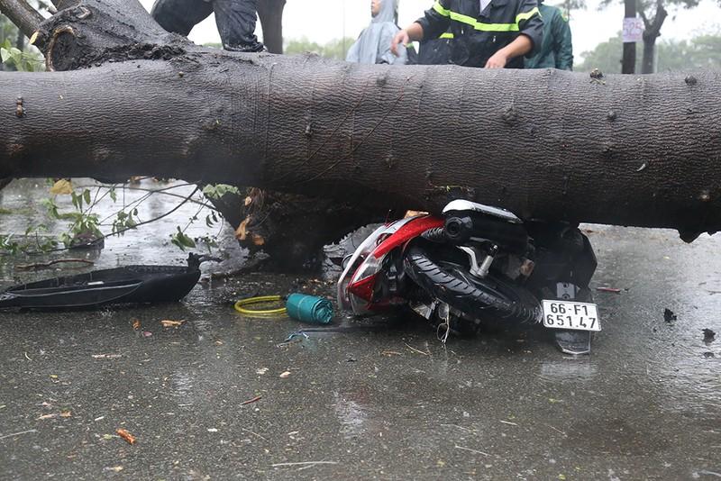 Toàn cảnh ngập của TP.HCM trong trận mưa kinh hoàng ngày 25-11 - ảnh 5