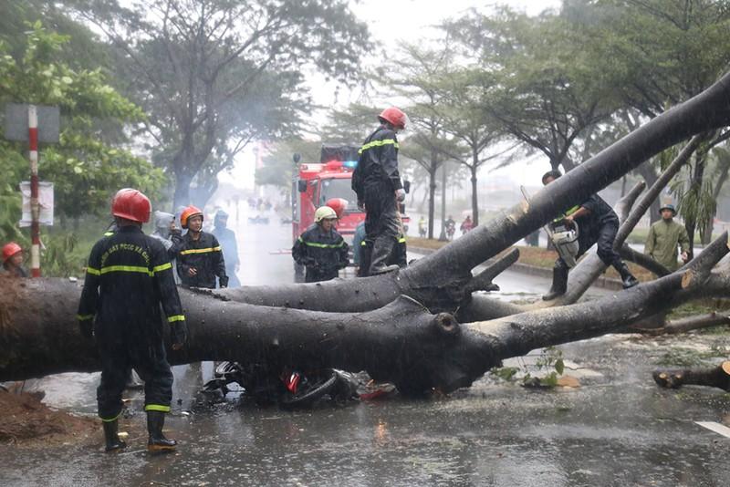 Toàn cảnh ngập của TP.HCM trong trận mưa kinh hoàng ngày 25-11 - ảnh 4