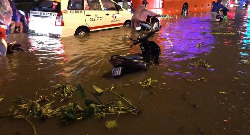 Toàn cảnh ngập của TP.HCM trong trận mưa kinh hoàng ngày 25-11 - ảnh 17