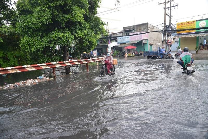 TP.HCM mưa lớn, đường lại biến thành sông - ảnh 11