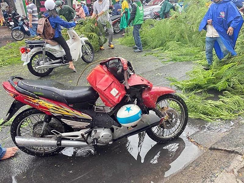 Cây phượng ở Tân Phú bật gốc, đổ ập xuống đường trong mưa - ảnh 2