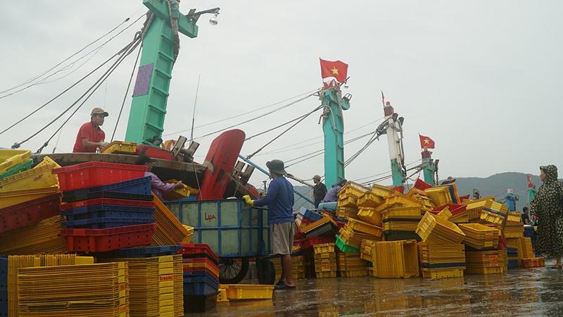 Những hình ảnh ở Quy Nhơn trước đêm bão số 9  - ảnh 12
