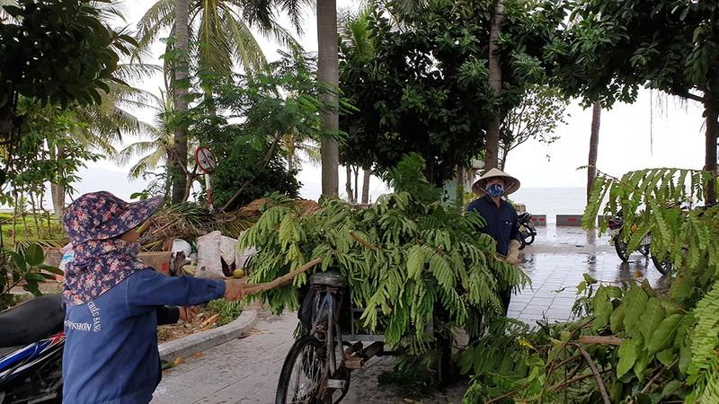 Những hình ảnh ở Quy Nhơn trước đêm bão số 9  - ảnh 8