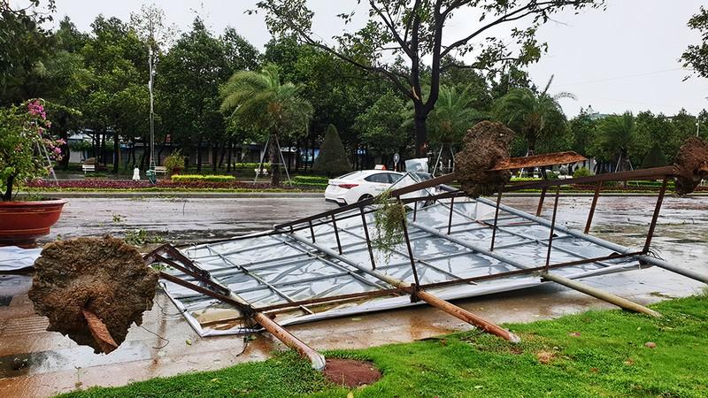 Cảnh tan hoang sau bão số 9 ở TP Quy Nhơn, Bình Định - ảnh 5
