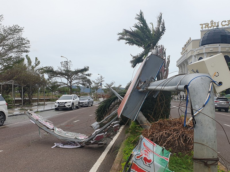 Cảnh tan hoang sau bão số 9 ở TP Quy Nhơn, Bình Định - ảnh 7