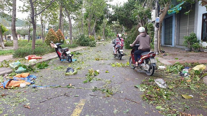 Cảnh tan hoang sau bão số 9 ở TP Quy Nhơn, Bình Định - ảnh 16