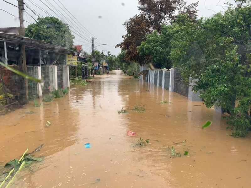 Cảnh tan hoang sau bão số 9 ở TP Quy Nhơn, Bình Định - ảnh 18