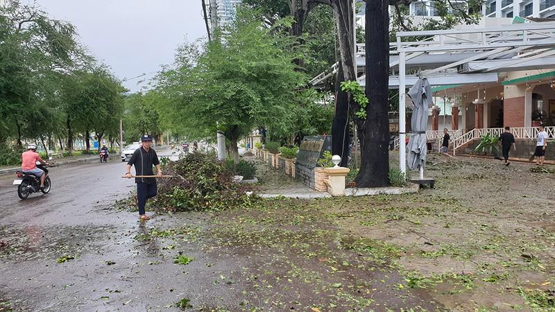 Cảnh tan hoang sau bão số 9 ở TP Quy Nhơn, Bình Định - ảnh 15