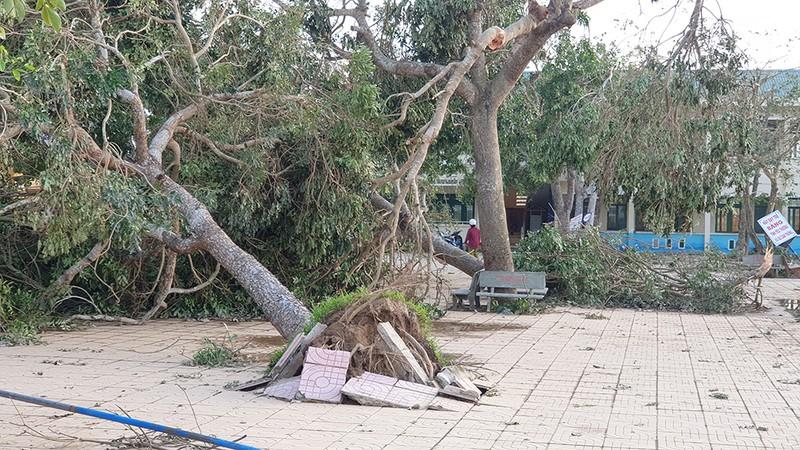 Cận cảnh trường học tan hoang sau bão ở Quảng Ngãi - ảnh 12