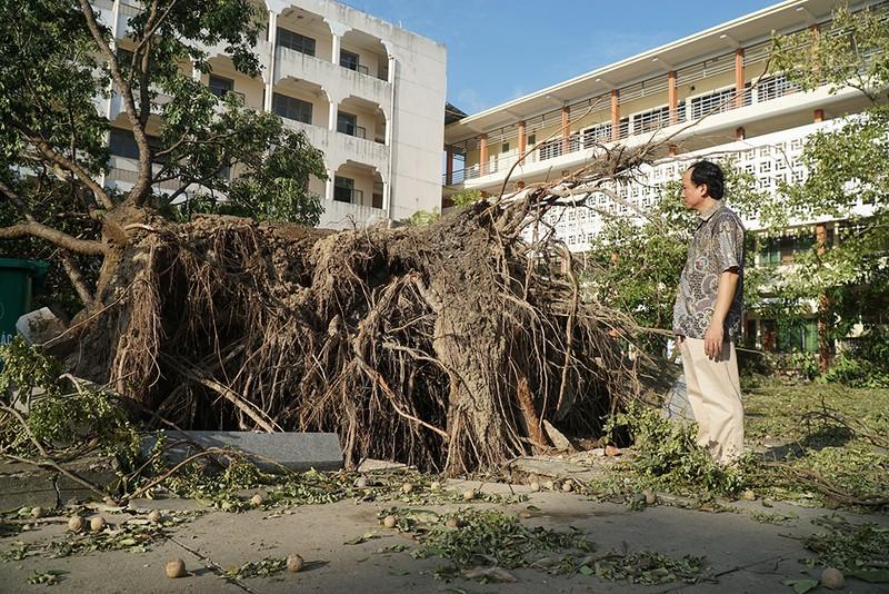 Cận cảnh trường học tan hoang sau bão ở Quảng Ngãi - ảnh 6