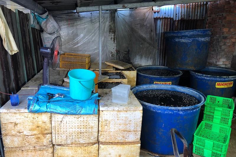 Phát hiện 1,8 tấn thịt ốc ngâm hóa chất chuẩn bị bán - ảnh 2