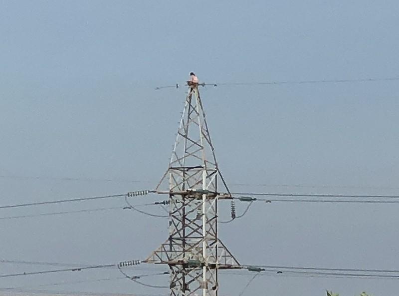 Cứu 1 phụ nữ ngồi trên đỉnh trụ điện cao thế ở TP Thủ Đức - ảnh 1