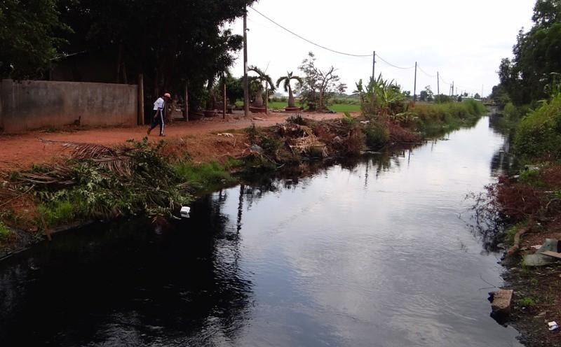 Dân Bình Chánh lo lắng vì nguồn nước đen lan rộng - ảnh 1
