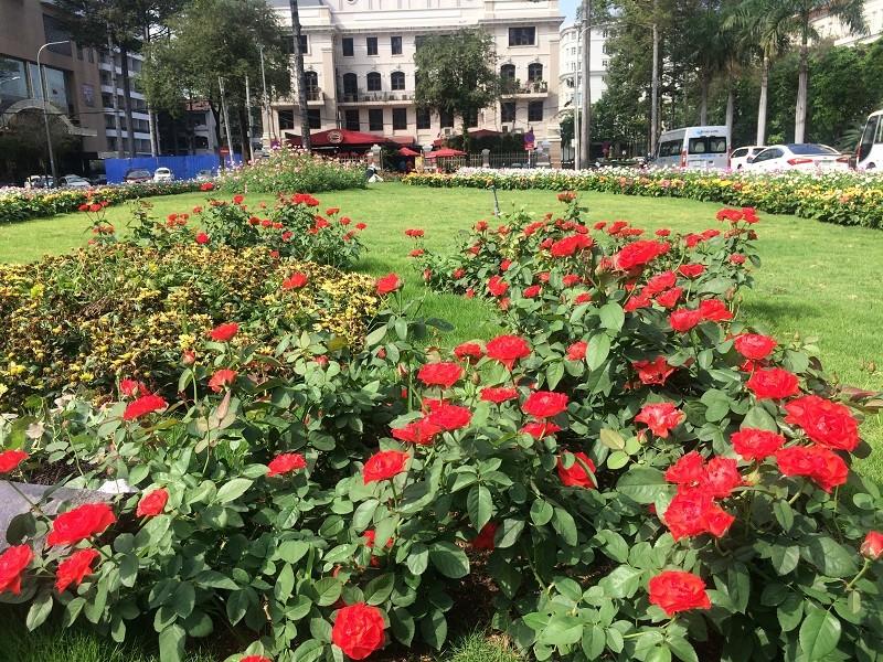 Bãi xe 'khủng' giờ thành công viên hoa - ảnh 3