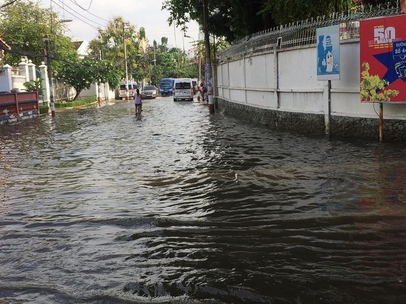Sau mưa đêm, người Sài Gòn lội nước đi làm  - ảnh 3